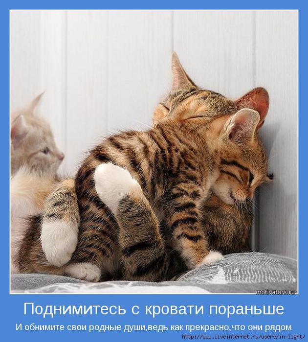 мотиватор любовь позитив 12 (630x700, 204Kb)