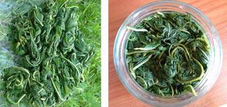 Подробный рецепт приготовления Копорского чая