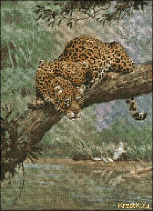 ягуар на дереве.