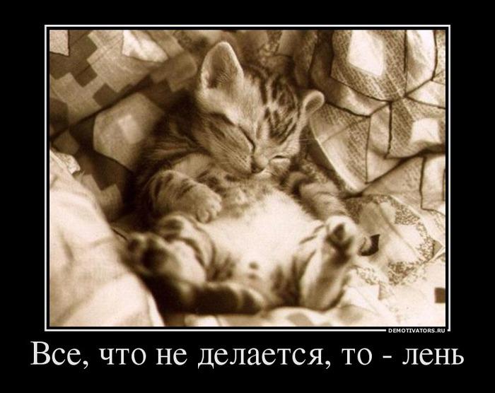 Лень - не порок, а стиль жизни!