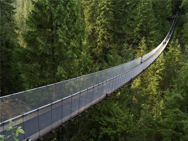 Висячий мост капилано,ванкувер,канада (600x450, 104Kb)