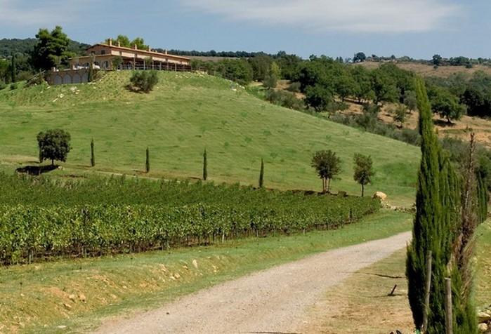 Солнечный тосканский стиль интерьера гостиницы Conti di San Bonifacio 23 (700x476, 109Kb)