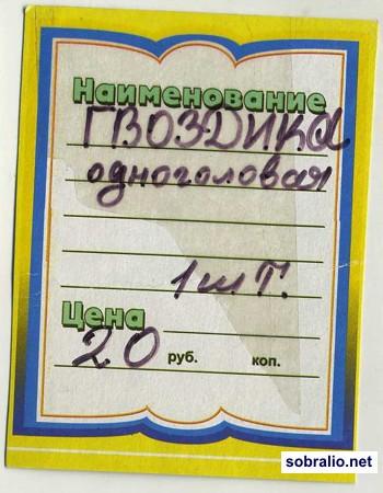 1163_gvozdika_odnogolovaya (350x450, 50Kb)