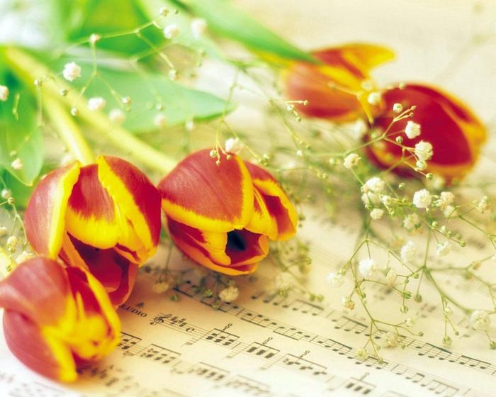 Музыка и цветы картинки 4