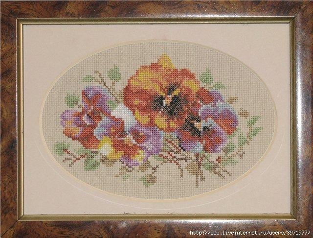 3971977_ZR_B016_Buttonhole_with_pansy (640x486, 194Kb)