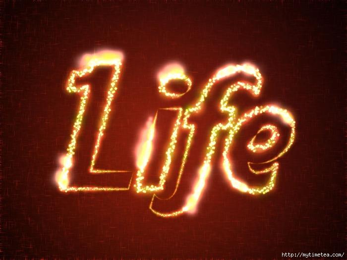 4355329_life (700x525, 213Kb)