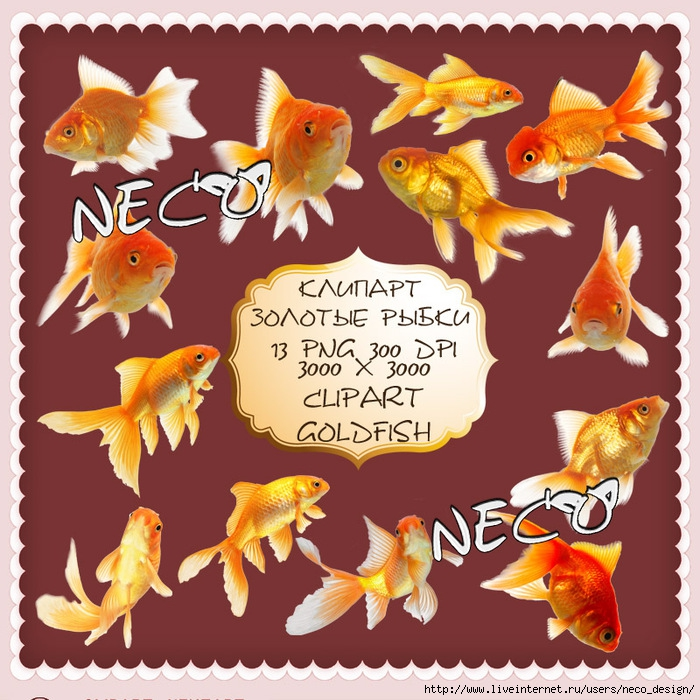 1333366452_clipart_goldfish_by_Neco (700x700, 344Kb)