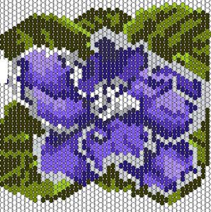 1333376560_fialka_shema (298x300, 87Kb)