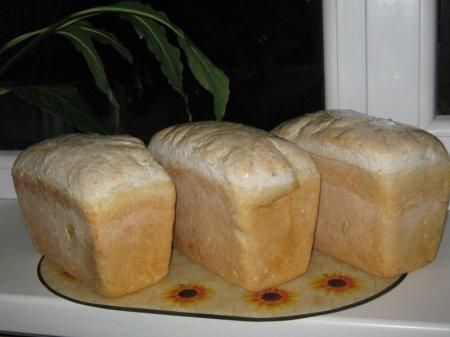 Одарю двух ДД на ОВ в это воскресенье, 25.12.2011.  Я сама делаю солод из зерен и из солода пеку бездрожжевой хлеб...