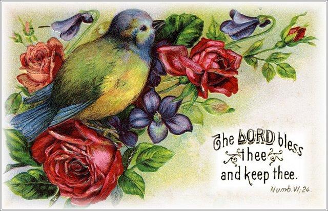 bird with scripture (640x413, 86Kb)