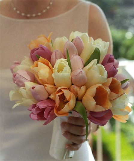 4061723_tulipsbouquet (447x536, 41Kb)