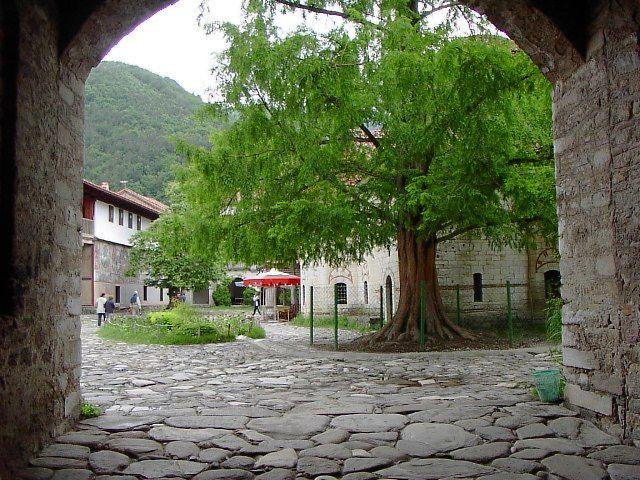 Бачковский монастырь 96548