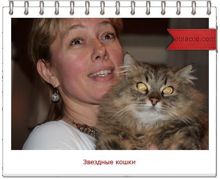 Арина ШАРАПОВА с котом Васей/3518263_koshki (434x352, 188Kb)