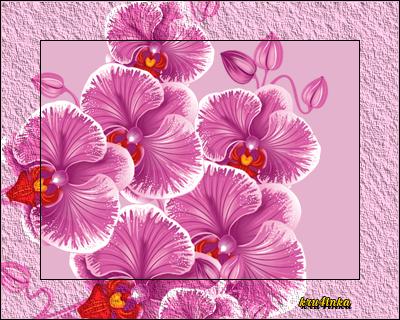 ОрхидеиРам (400x320, 280Kb)