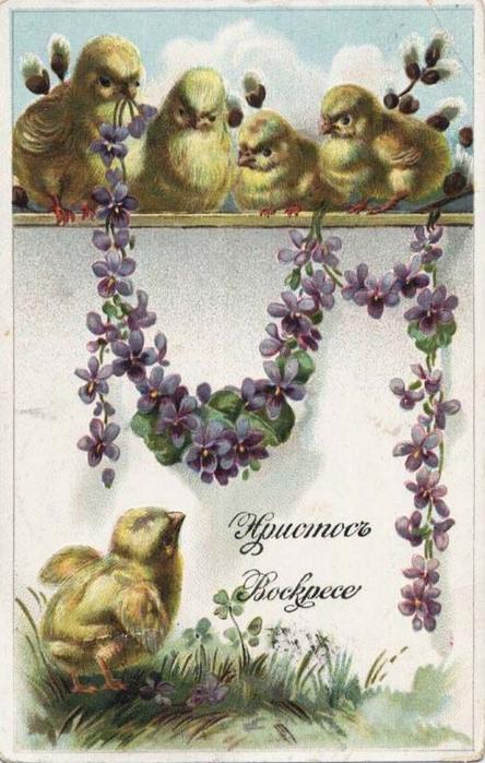 Винтажные открытки к Пасхе сделанные в России 21 (444x700, 356Kb)