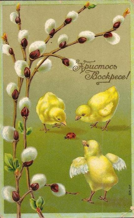 Винтажные открытки к Пасхе сделанные в России 35 (430x700, 58Kb)