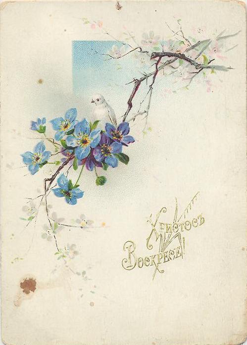 Винтажные открытки к Пасхе сделанные в России 39 (499x695, 50Kb)