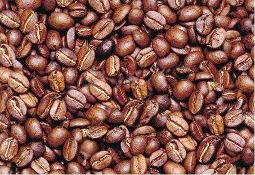 hidden-face-in-beans (499x343, 70Kb)