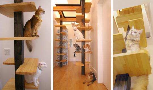 Идеи для кошек своими руками