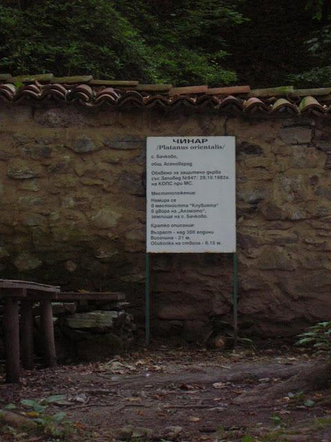 Бачковский монастырь 38262