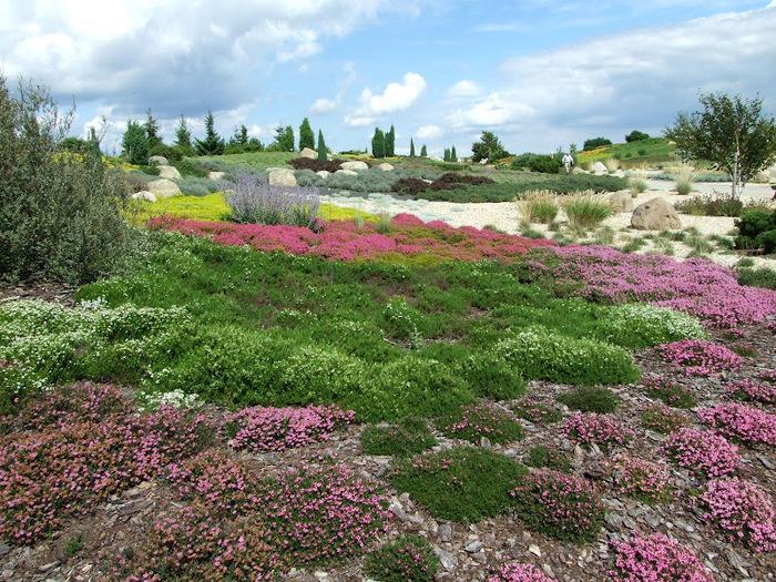 Сад камней Нохтен - Lausitzer Findlingspark Nochten 47290