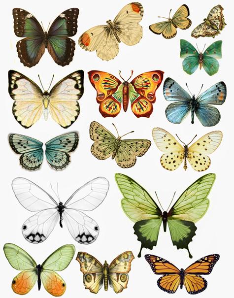 1295886955_55_FT838_swirlydoos_feb_2011_butterflies (475x605, 315Kb)