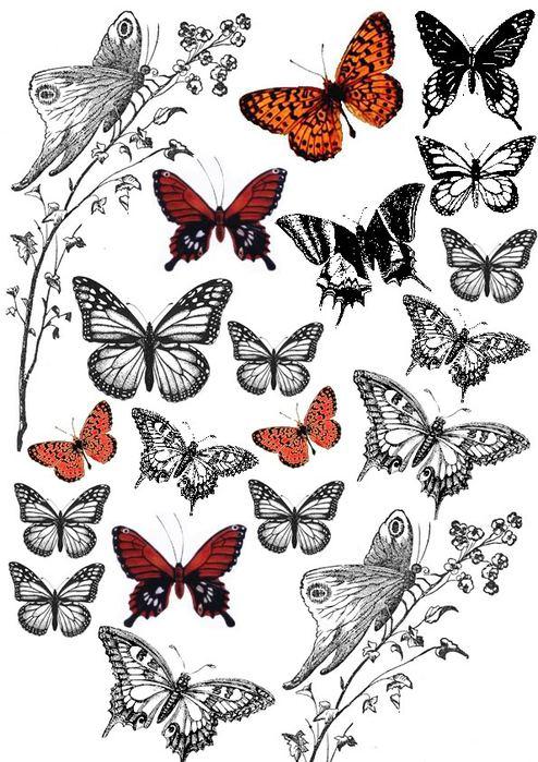 butterflies (494x700, 98Kb)
