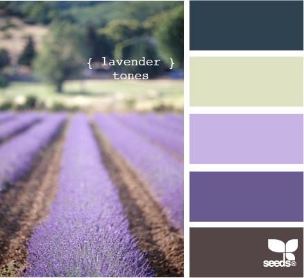 LavenderTones510 (438x400, 182Kb)