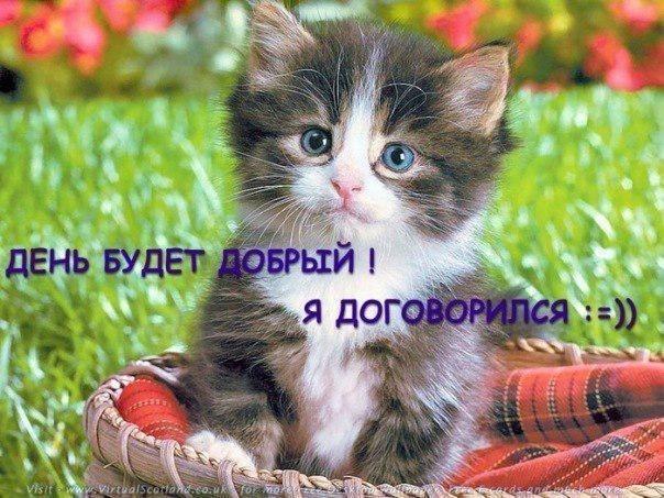 4836674_85315568_2 (604x453, 87Kb)