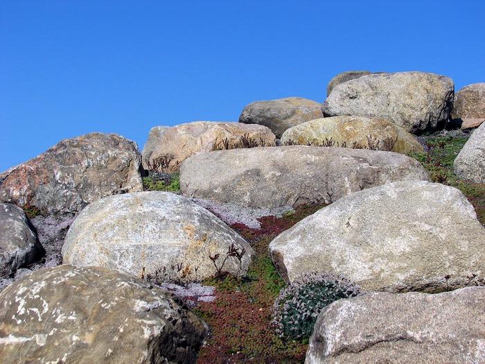 Сад камней Нохтен - Lausitzer Findlingspark Nochten 91282