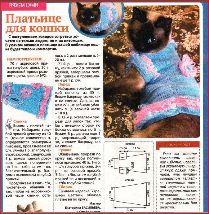 Вязаный комбинезон для кошки своими руками пошагово