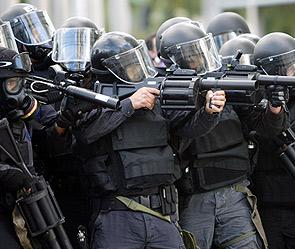 Французский спецназ (295x249, 35Kb)