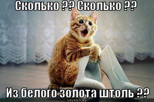 iz-belogo-zolota_1331875953 (500x333, 61Kb)