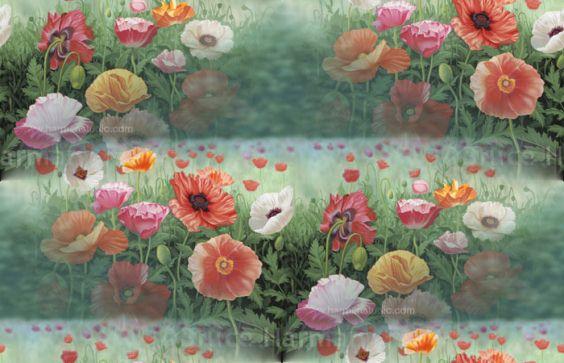 Poppies700px (564x363, 45Kb)