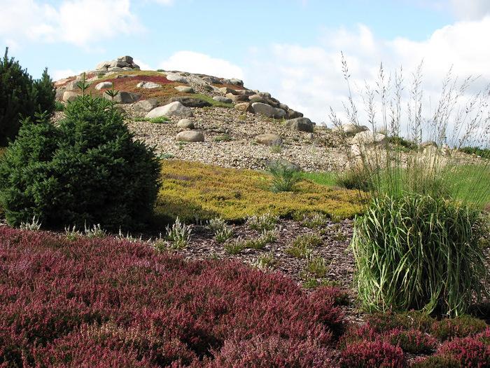 Сад камней Нохтен - Lausitzer Findlingspark Nochten 98006