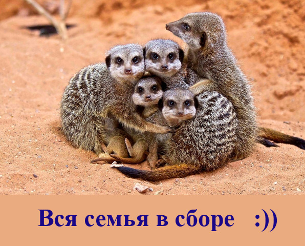 семья/4348076_semya (596x480, 140Kb)