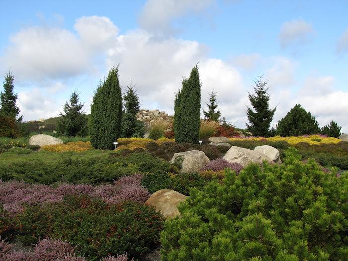 Сад камней Нохтен - Lausitzer Findlingspark Nochten 39941