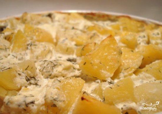Запечь картошку в сметане в духовке с фото