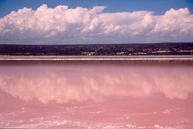 australie lac rose