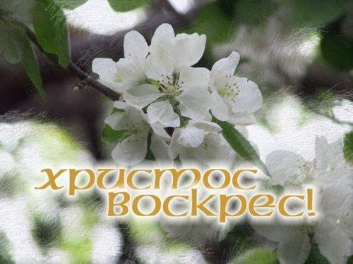 http://img1.liveinternet.ru/images/attach/c/5/85/792/85792571_86.jpg