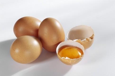 Как заработать тысячу долларов на куриных яйцах? куриные-яйца.