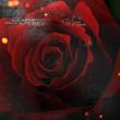http://img1.liveinternet.ru/images/attach/c/5/85/851/85851801_ar2.png