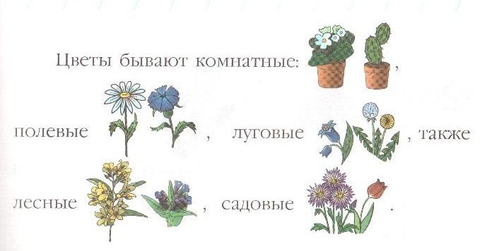 Один цветок, два цветка,…,