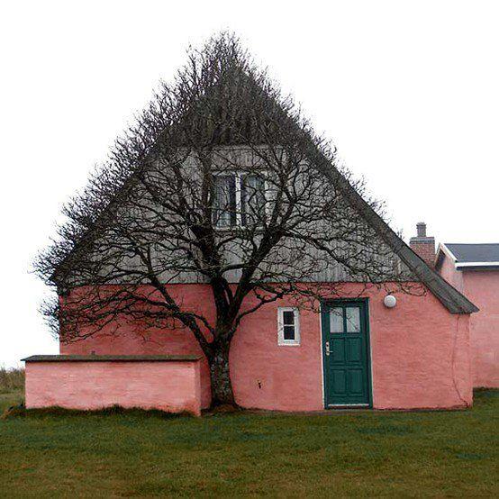 дерево и дом (554x554, 59Kb)