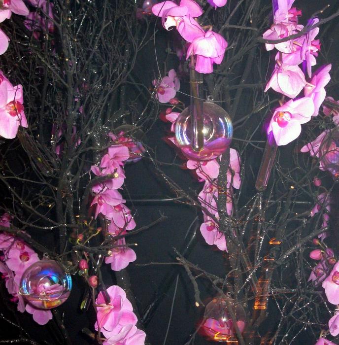 tn_Выставка цветов 079 (688x700, 658Kb)