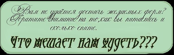 3869504_Bezimeni3 (700x222, 185Kb)