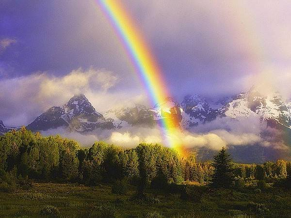 rainbow11 (600x450, 42Kb)