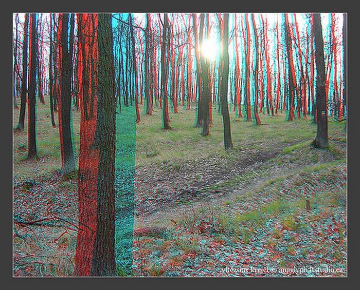 Лучшие стерео-фото пейзажи 70 (700x565, 192Kb)
