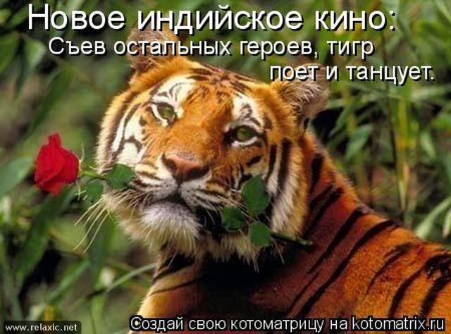 kotomatrix_0091 (640x474, 66Kb)