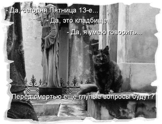 http://img1.liveinternet.ru/images/attach/c/5/85/946/85946813_v_pyatn_13.jpg